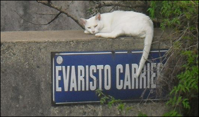 2017-05-17 - Calle Evaristo Carriego